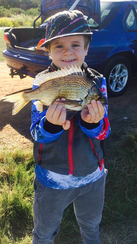 Bream caught at the Greenough River